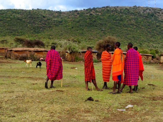 Vzpomínky na Afriku, aneb proč se alespoň jednou musíte vydat na safari