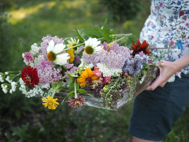 Květiny z venkova, láska na první pohled